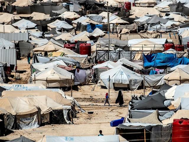 """""""Le cessez-le feu, un moment idéal pour les rapatrier"""" : l'appel de la mère d'une djihadiste française retenue en Syrie"""