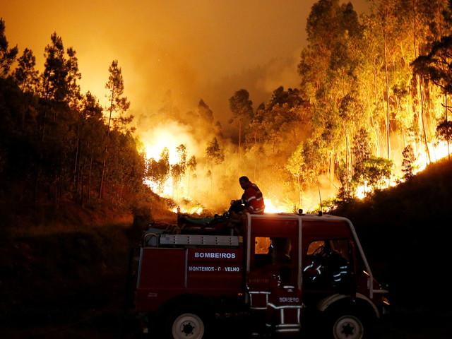 Un violent feu de forêt fait au moins 62 morts au Portugal