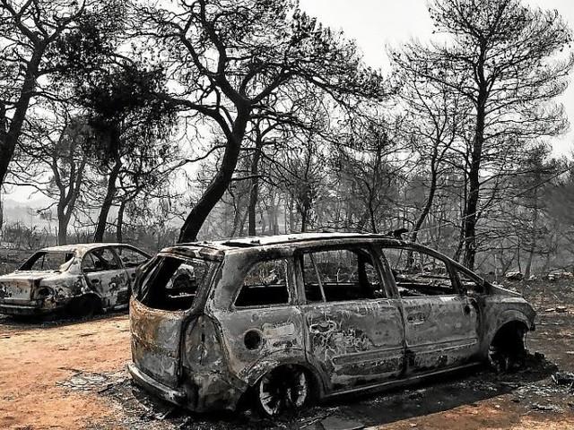 Grèce. Incendie sur l'île d'Eubée, une «catastrophe écologique»
