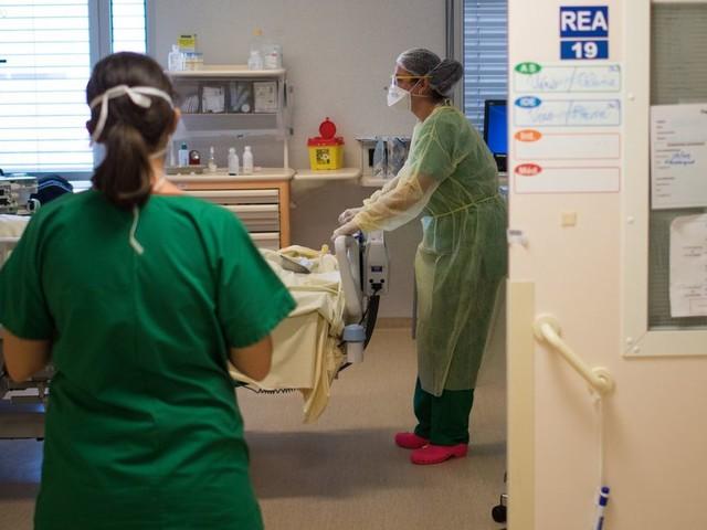 Coronavirus: 31 morts en 24h dans les hôpitaux en France
