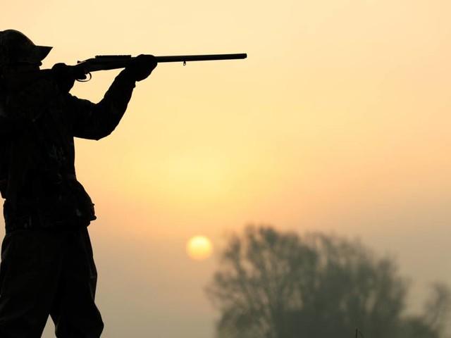 Les gérants d'un Super U du Rhône épinglés pour leur safari-chasse en Afrique