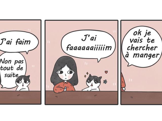 Top 10 des illustrations de Catncatcomics, le chat qui était un petit FDP