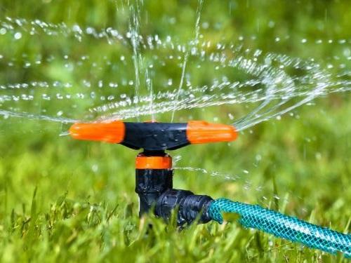 Innovation agricole: Esenè, une technologie qui économise 80% d'eau