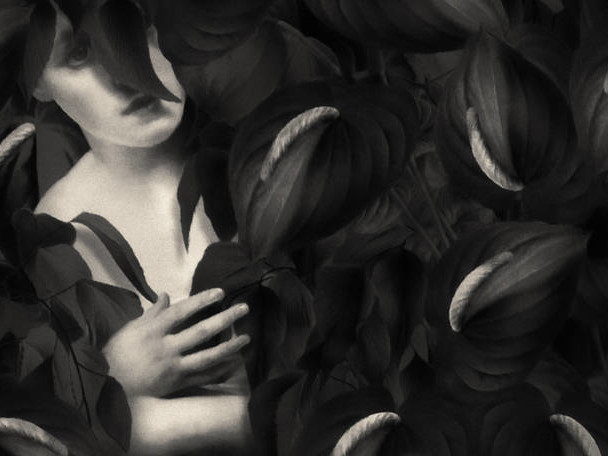 Surrealistic Black & White Digital Paintings