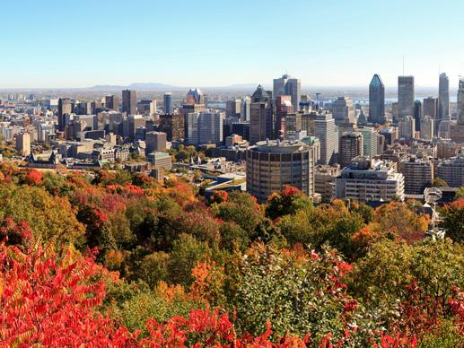 Quelle langue parle t-on à Montréal ?