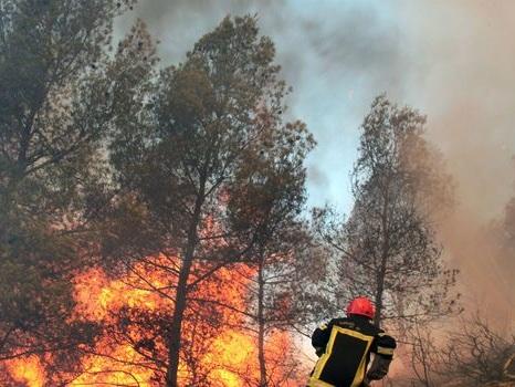 Aubagne: trois feux ravagent 150 hectares de forêt, des vacanciers évacués