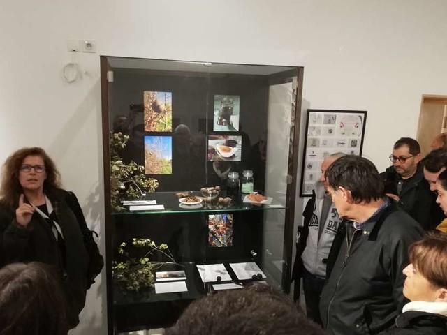 Bordeaux : le Jardin botanique expose sur l'homme et la nature