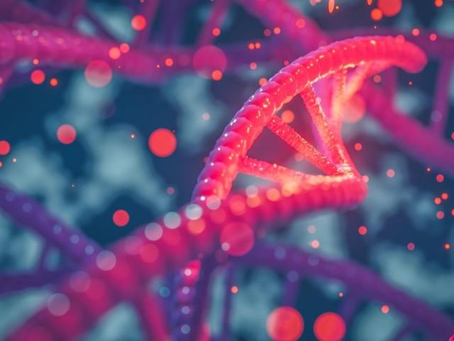 La sévérité du Covid-19 peut-elle s'expliquer par la génétique?