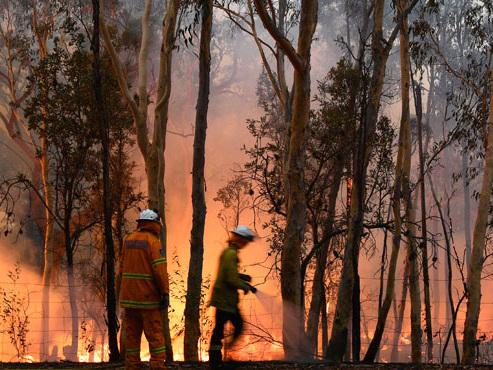 """Une centaine de feux font rage SIMULTANÉMENT en Australie: """"Des conditions très dangereuses pour les pompiers"""" (photos)"""