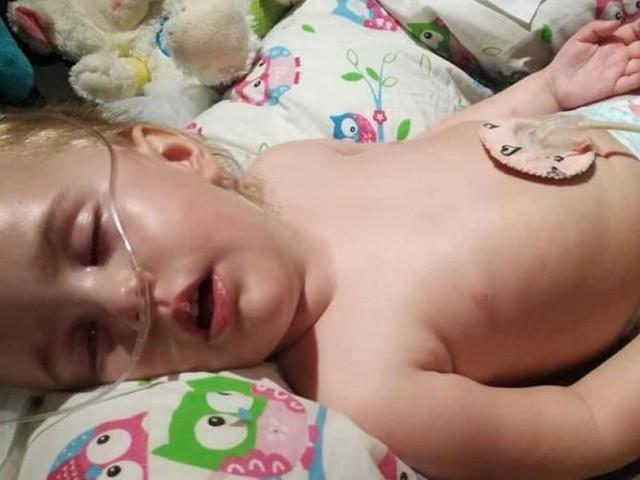Les parents de Zoélia, 2 ans, se battent pour lui offrir les meilleurs soins à Tubize: «L'espérance de vie excède rarement les 4 ans»