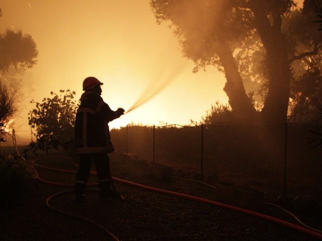 Carcassonne : 500 hectares de pinèdes détruits par un feu en cours