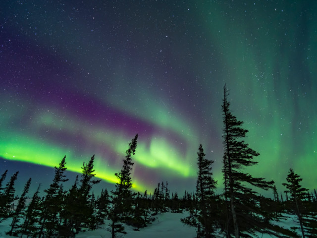 Vous pouvez désormais observer les aurores boréales depuis votre canapé
