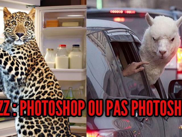 Quizz : ces 20 photos sont photoshopées ou pas photoshopées ?