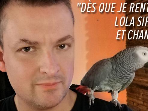 """Inconsolable, Frédéric lance un appel pour retrouver Lola, son perroquet: """"C'est un fameux vide à la maison"""" (photos)"""