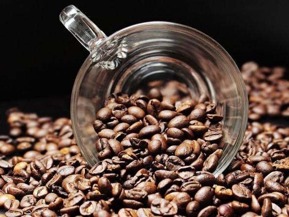 Un tonneau contenant du café vieux de plus d'un siècle retrouvé en Arctique – photo