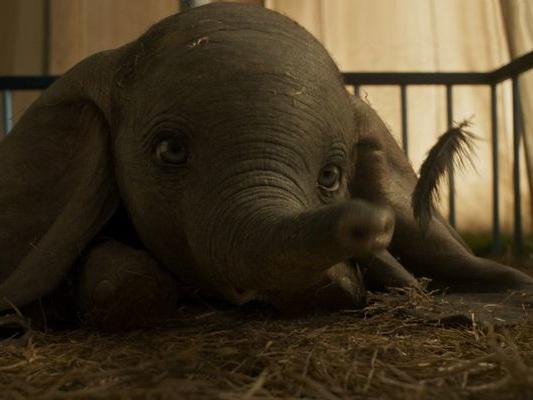 Dumbo : la nouvelle bande-annonce