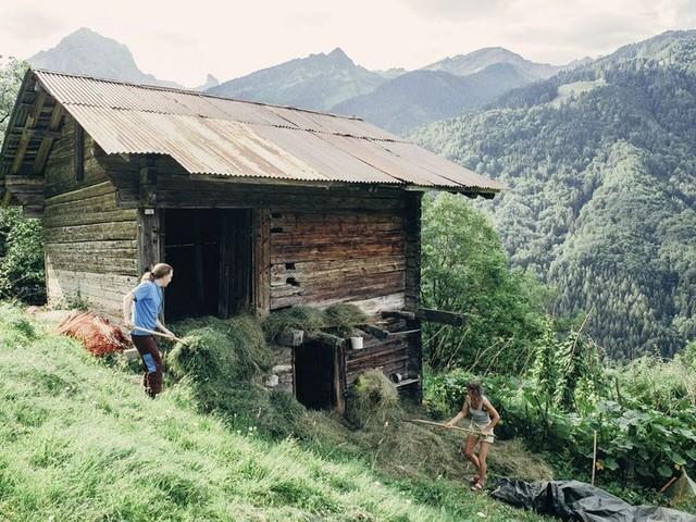 Suisse : la solidarité aux sommets