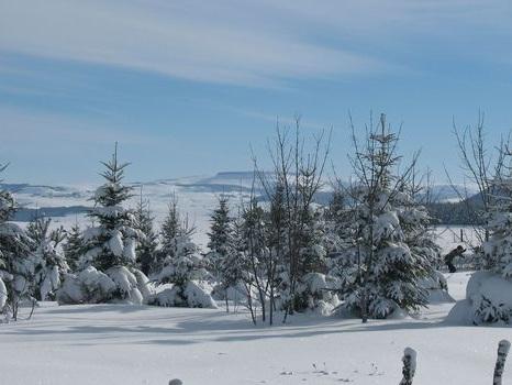 Massif Central: cinq bonnes raisons de skier dans le Sancy