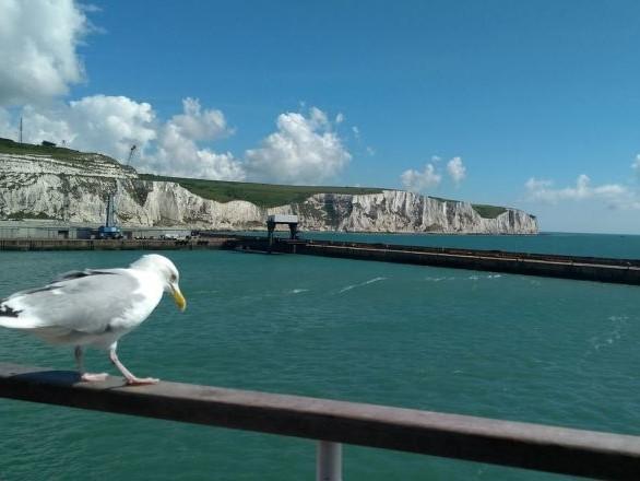 Une sortie en mer tourne au drame dans la Manche, 3 enfants morts