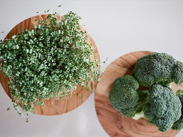 Faire pousser des micro-pousses à la maison : un petit jardin dans votre propre cuisine !