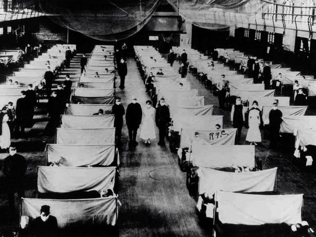 Épidémiologie, problématiques et enjeux (2/8) : Impact des pandémies