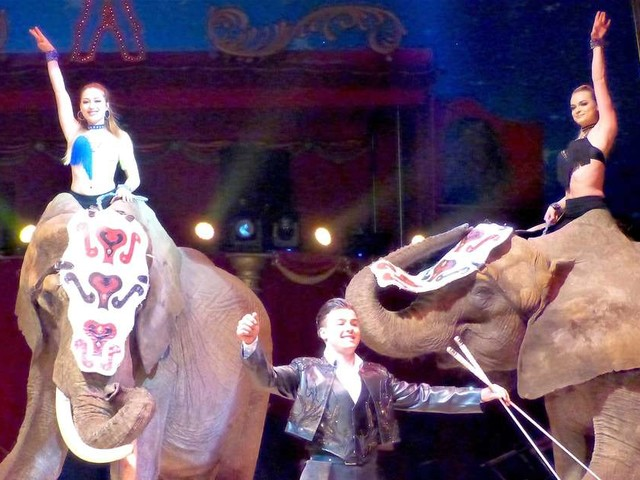 Agen : gagnez des places pour le cirque Zavata