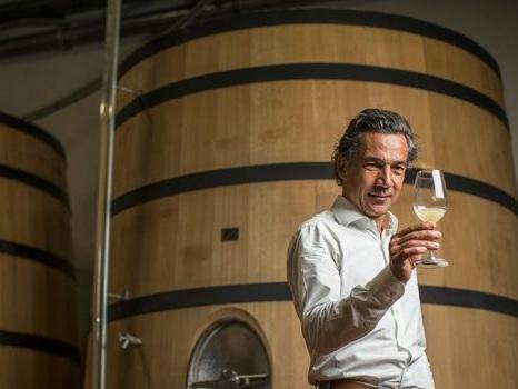 Les vins du Languedoc dans la cour des grands