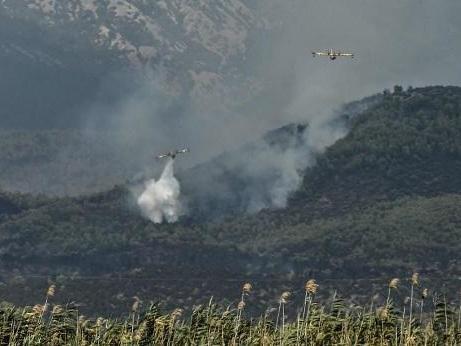 Grèce: un important feu de forêt à une soixantaine de km d'Athènes