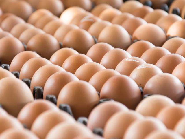 Des lots d'œufs contaminés à l'insecticide livrés en France, en provenance des Pays-Bas