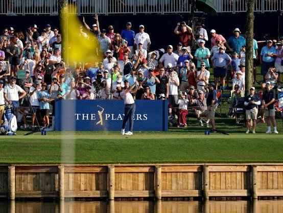 Golf - PGA Tour - Rory McIlroy et Tommy Fleetwood mènent le Players Championship