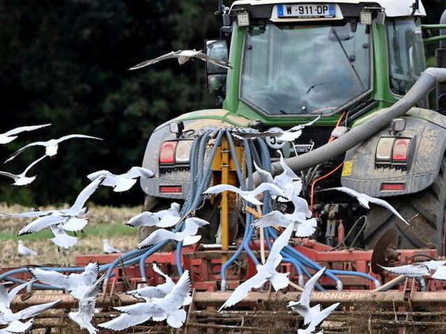 Le Parlement vote une loi pour protéger la rémunérationdes agriculteurs
