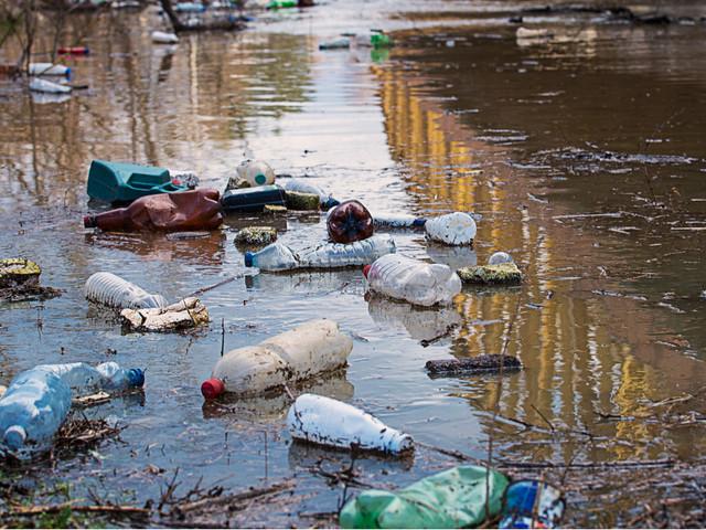 Le gouvernement va instaurer un «délit d'écocide» pour punir les atteintes contre l'environnement