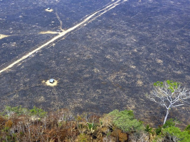 Incendies en Amazonie : le Brésil refuse l'aide internationale