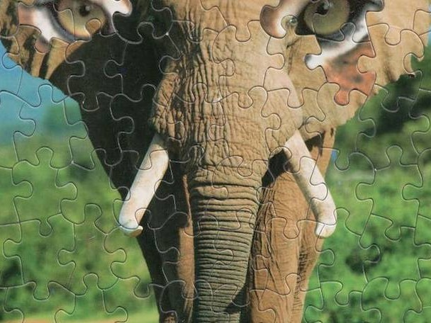 Strange and Surreal Puzzle Hybrids