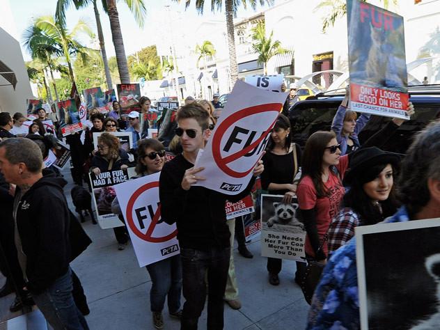 Mode : La Californie bannit la fourrure animale