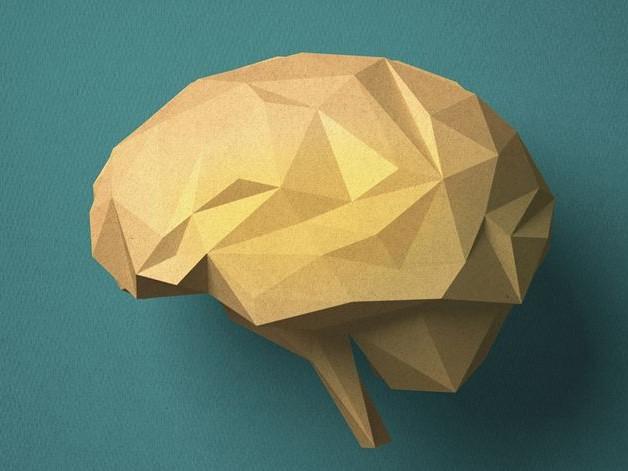 La bioéthique de nos cerveaux