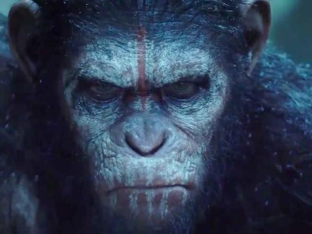 La Planète des singes : Les Origines - critique simiesque