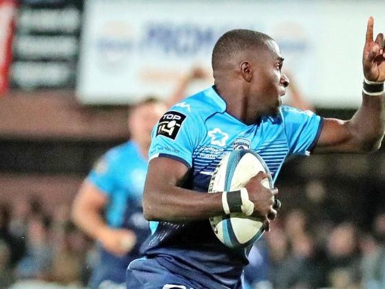 Rugby - Top 14 - Le XV type de la 10e journée de Top 14
