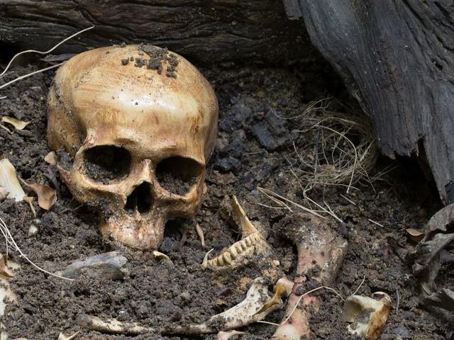 Le premier meurtre connu de l'histoire de l'humanité aurait été commis il y a 430 000 ans