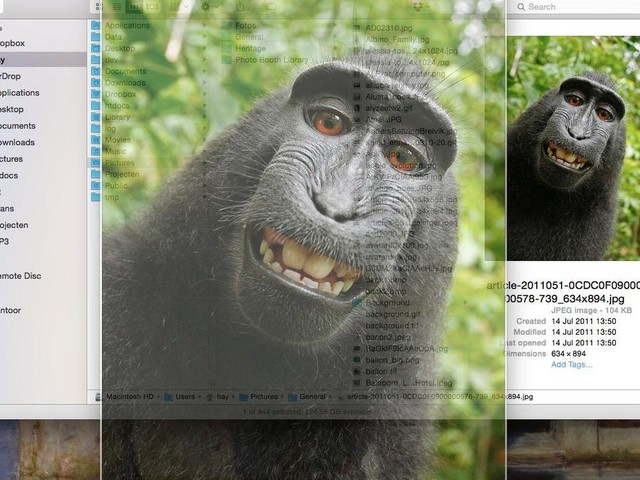 macOS : un chercheur en sécurité trouve une grosse faille dans Quick Look