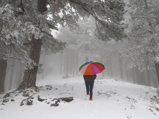 Pluie, vent, neige, froid… Vers une météo de plus en plus hivernale !