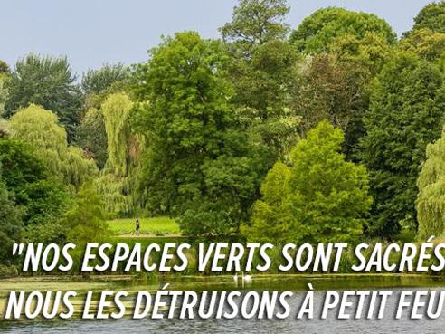 """524 arbres seront abattus au Parc de la Woluwe cet automne: """"La commune reste très vague"""", déplore Pascale"""