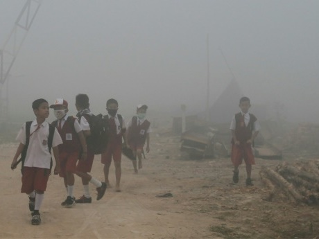 Le changement climatique modèlera la santé de ceux qui naissent aujourd'hui (rapport)