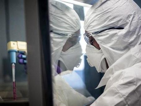 Les premiers tests de vaccin ne sont pas attendus avant avril