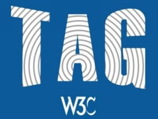W3C opens Technical Architecture Group (TAG) election