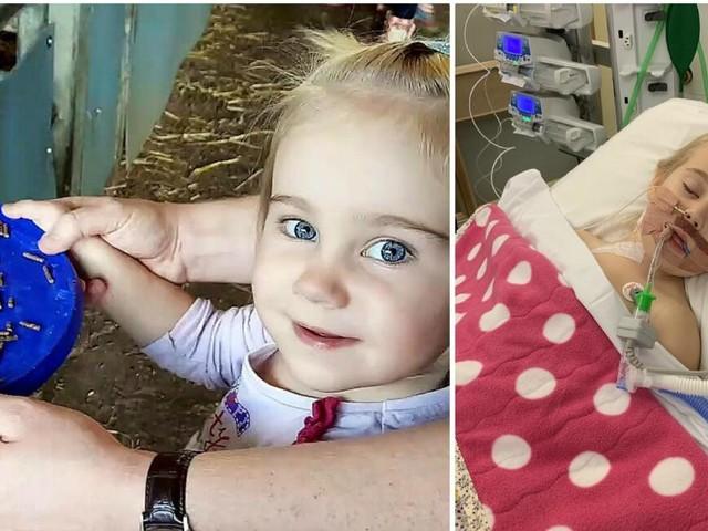 Une petite fille de 4 ans entre la vie et la mort après une visite au zoo: «C'était terrifiant, j'ai cru qu'on allait la perdre»