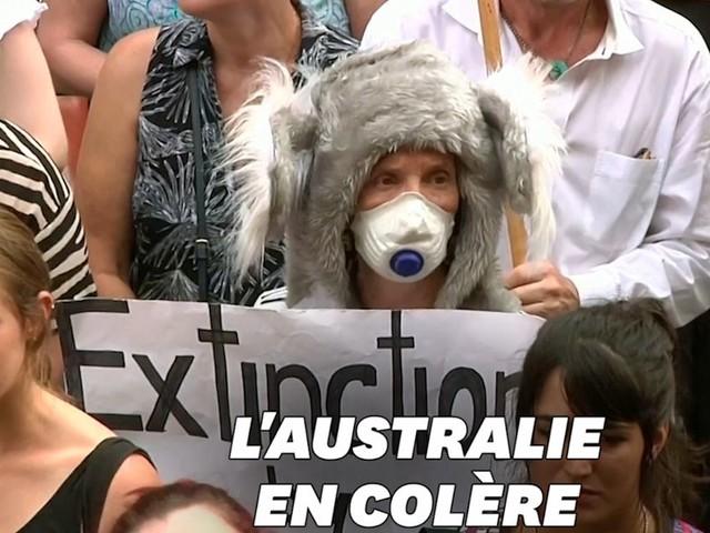 Ces Australiens manifestent contre la gestion des incendies par leur premier ministre