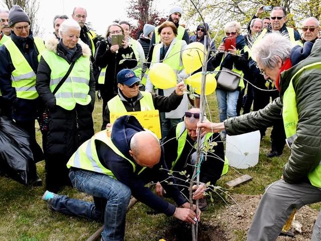 Carcassonne : le mouvement des Gilets jaunes s'enracine