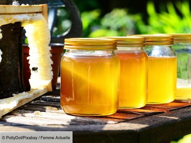 Zoom sur la récolte du miel de nos régions