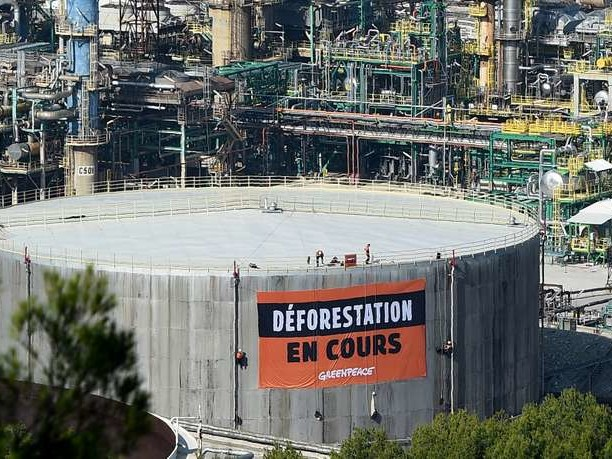 L'Assemblée nationale maintient l'huile de palme parmi les biocarburants